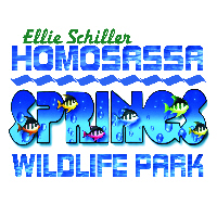 1377695238EllieSchillerHomosassaspringsStatePark