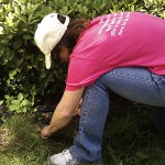 Anita working in flowerbed
